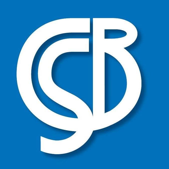 Carolina Basement Solutions, LLC