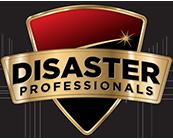 Disaster Professionals