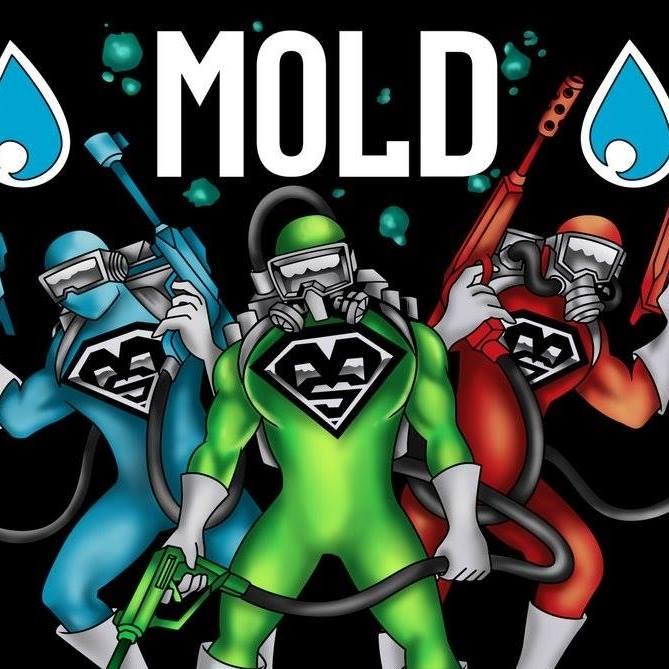 Mold Squad Restoration & Contracting