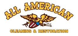 All American Rug Cleaning